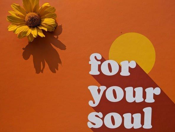 For Your Soul Box September 2021 – Inhalt der Foodbox von Stefanie Giesinger & Foodist